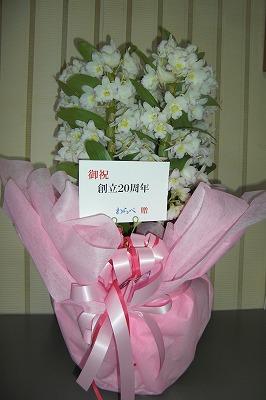 わらべさんからのお花.jpg