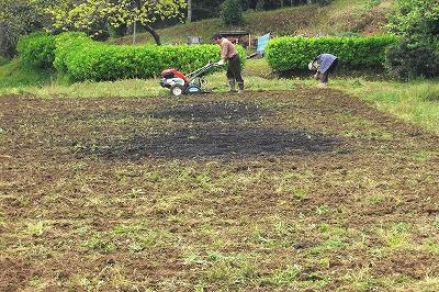 耕す息子と草取りする母のツーショット.jpg