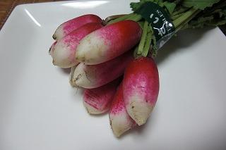赤かぶ キスミー.jpg
