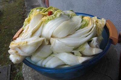 白菜のお漬物.jpg