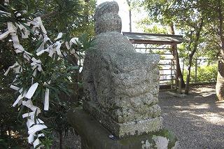 五十猛神社狛犬吽形.jpg