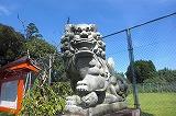 赤池神社の狛犬1.jpg