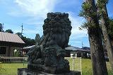 赤池神社の狛犬2.jpg