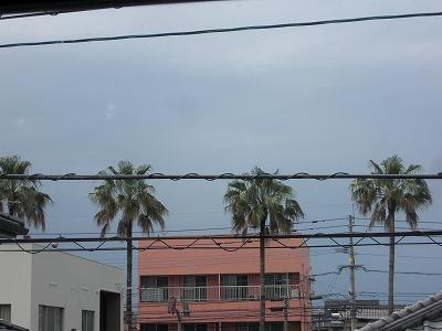 天気があやしげ.jpg