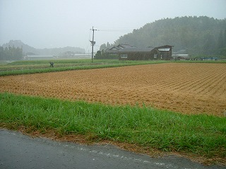 台風の来る朝