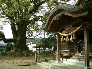 南方神社とクスの巨木.jpg