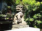 天祖神社狛犬2.jpg