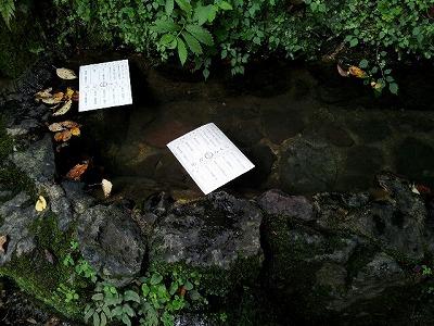 水占い.jpg